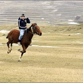 Intrecere cu cai