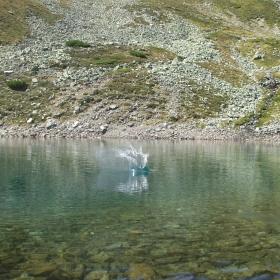 Lacul Iezer Papusa