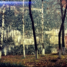 lanscape wall