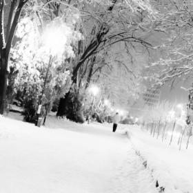 Timisoara - singuratate in alb