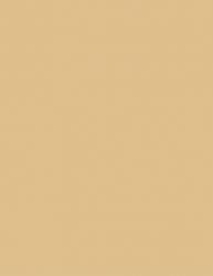 Colorama Fundal Carton 2.75 X 11m Barley