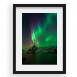 Green Curtains - Tablou 40x60cm Alex Conu 05