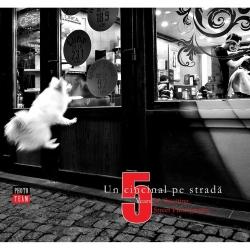 Un Cincinal Pe Strada - Album Foto