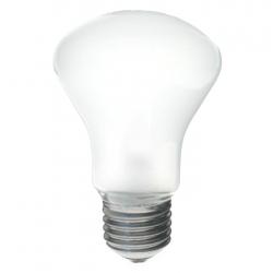 Elinchrom #23002 Modelling Lamp 100w D-lite/bxri