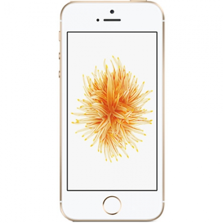APPLE iPhone SE 16GB LTE 4G Auriu / gold - RS125026590