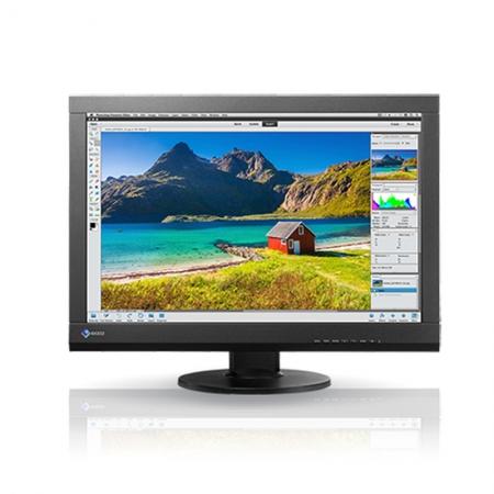 Eizo CS240 monitor 24