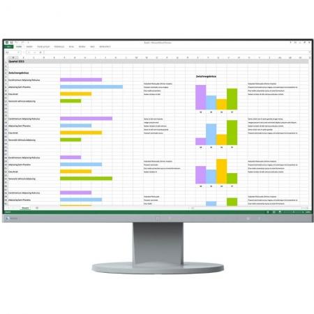 Eizo EV2450-WT - monitor IPS 23.8