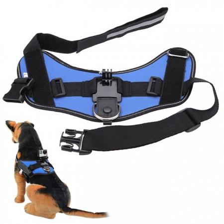 Kathay Gopro Dog harness Strap - albastru