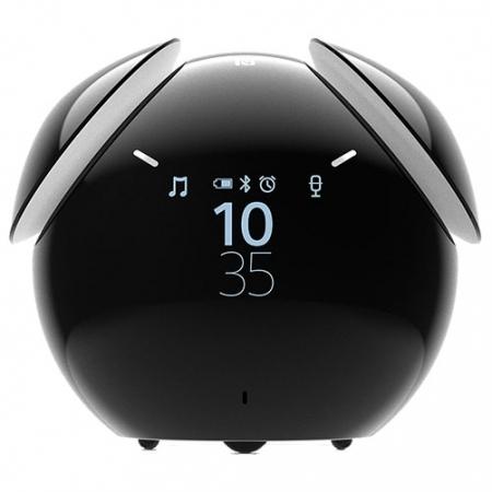 Sony - Boxa Portabila Wireless, Control Voce, Alarma, Negru