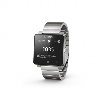 Sony SW2 - smartwatch business edition metalic silver - RS125025233