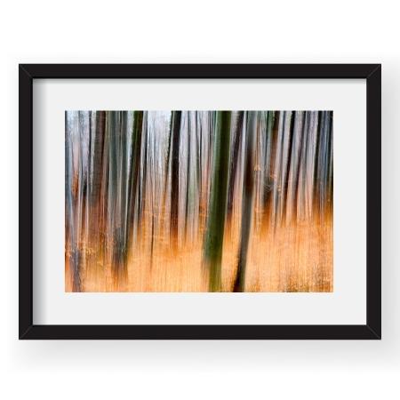 Padurea fermecata - Tablou 40x60cm Gina Buliga 02