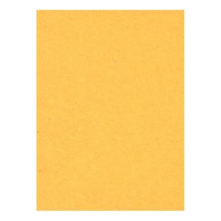 Creativity Backgrounds Sunflower 35 - Fundal carton 2.72 x 11m