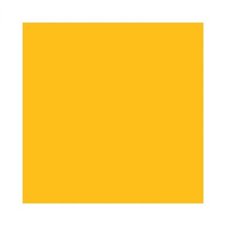 Fundal carton 2.72 x 11m Corn / Buttercup 70
