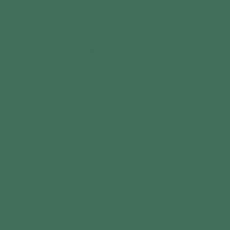 Fundal carton 2.75 x 11m Spruce Green 37